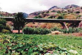 """<div style=""""text-align:center; color:white;""""><div style=""""font-size:17px; """">Viaduct on the Ribeira do Caniço</div><br>Client: SRESA (R.A. Madeira)<br>Year: 1992 – 1993</div>"""